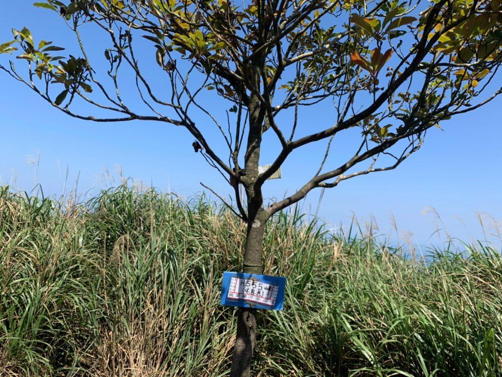 劍龍稜555峰