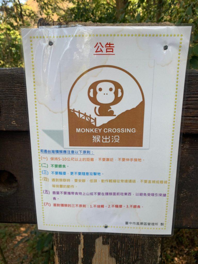 大坑2號步道有猴子